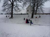 Børnene leger i sneen